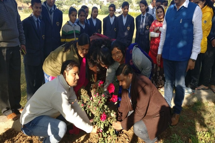 S Tech School-Plantation Activity