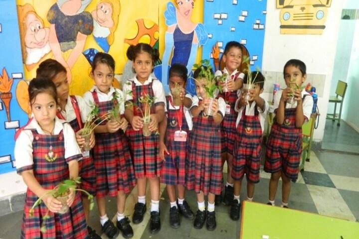 Seedling Public School-Plantation Activity