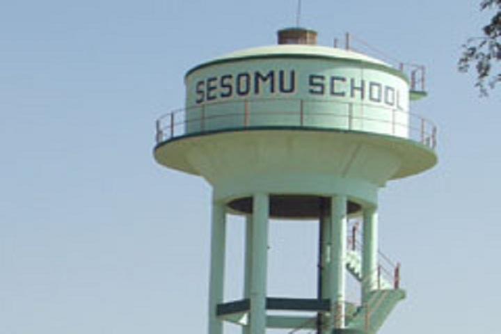 Sesomu School-School Tank