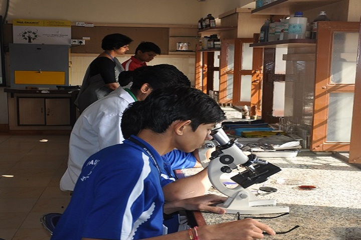 St PaulS School-Laboratory biology