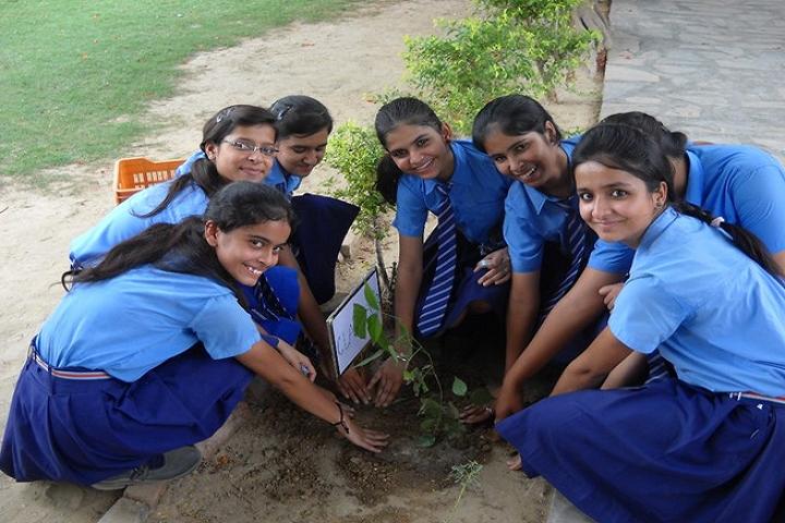 St Vivekanand Senior Secondary School-Others plantation