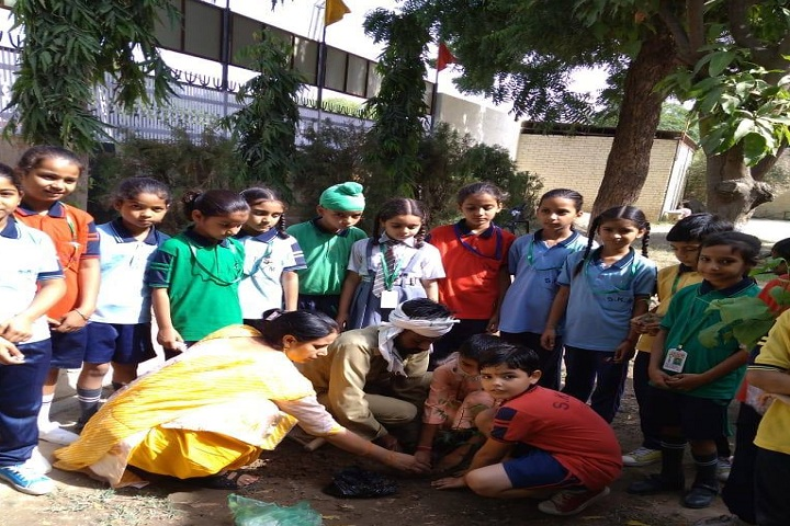 Swami Keshwanand Memorial Public School-Others plantation