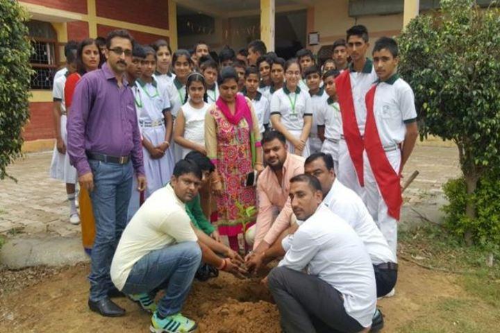 The Trigat School-Tree Plantation
