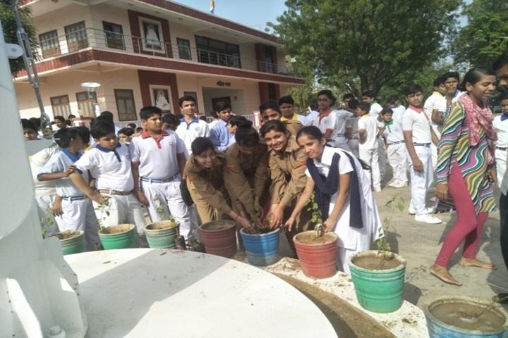 Vimal Vidya Vihar Senior Secondary School-Plantation