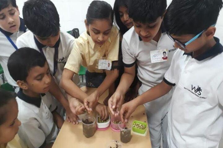 Witty International School-Science Activity