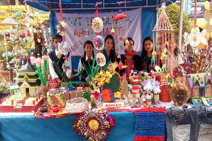 Government Secondary School-Science fair