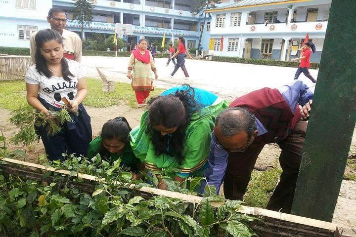 Government Senior Secondary School-Plantation