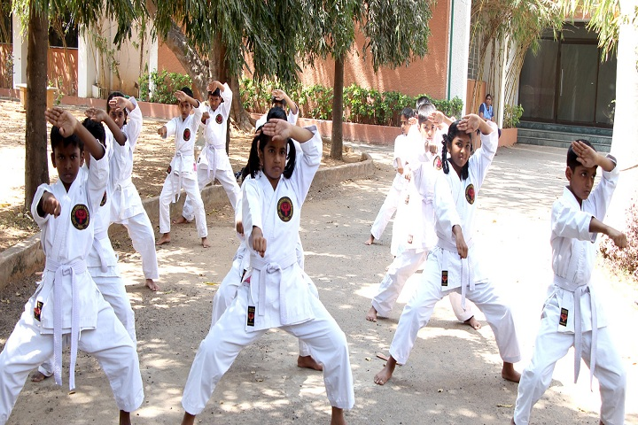 Akg Public School-Karate