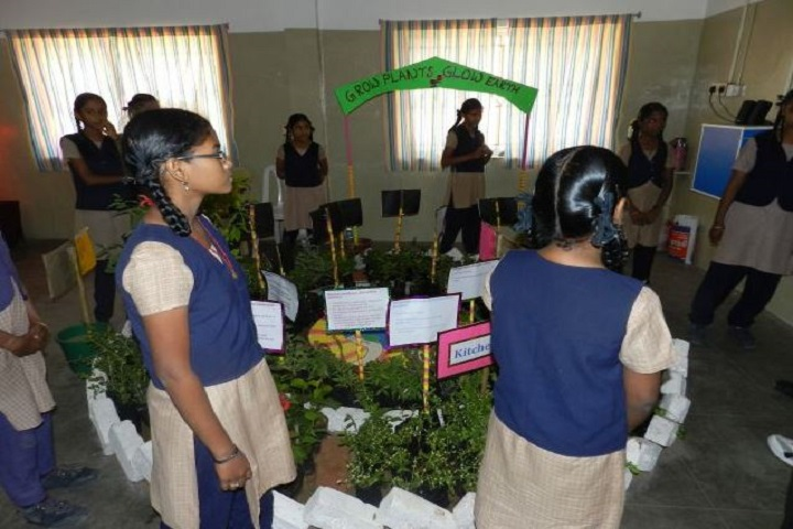 Akshaya Academy Cbse School-Science Exhibition
