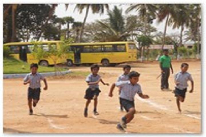Aurobindo vidhyalaya School-Schoolsports day