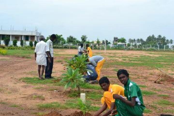 Bharathi Vidhya Bhavan School-Tree Plantation