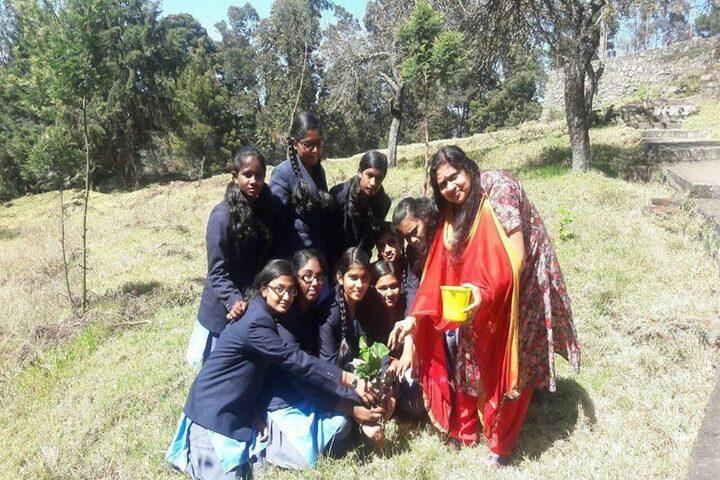 BhavanS Gandhi Vidyashram-Tree Plantation