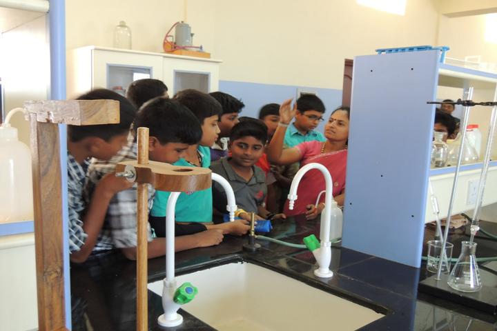 Blossom Public School-Chemistry Lab