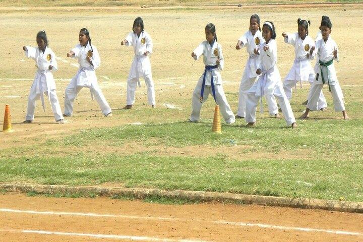 Boaz Public School-Karate Activity