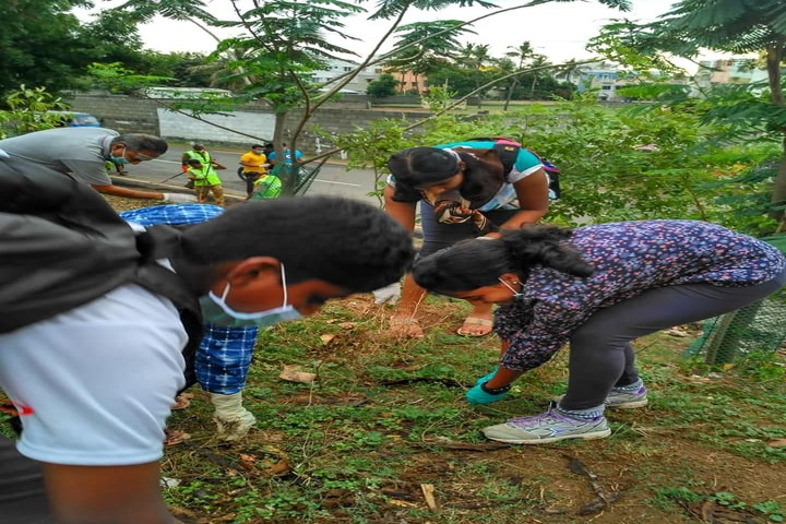 Boaz Public School-Tree Plantation