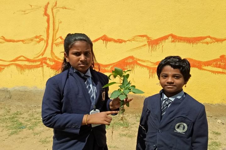 Brammaas Vidhyalaya School-Environment Day