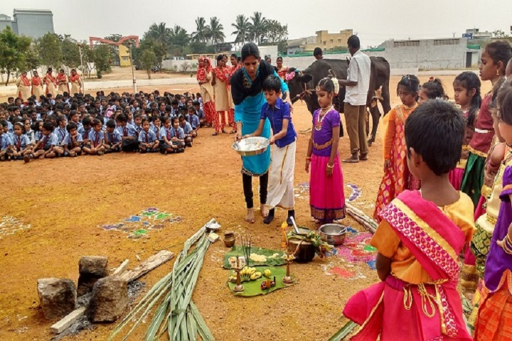 Brindhavan Vidhyalaya Public School-Pongal Celebrations
