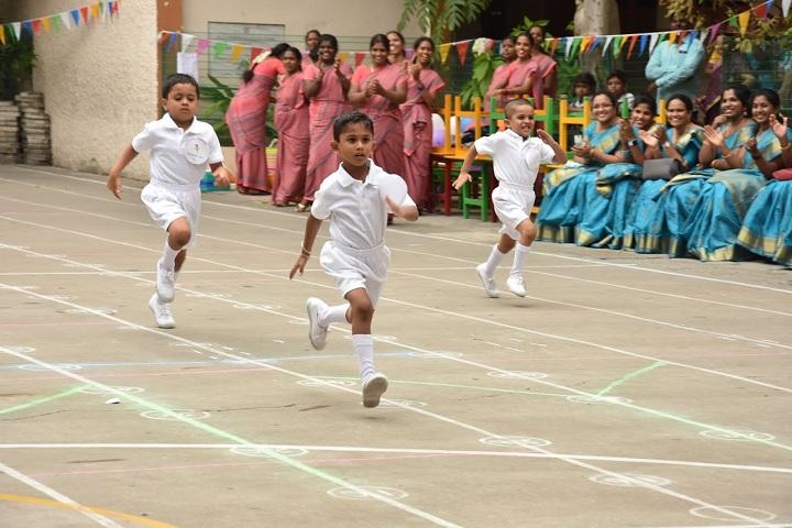 D A V Boys Senior Sec School-Sports