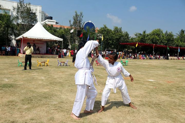 Gateway International School-Karate Activity