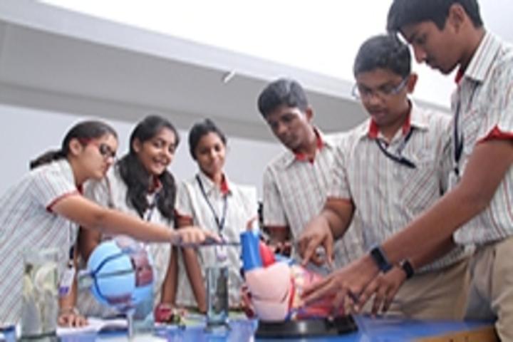 Gedee Public School-Biology Lab