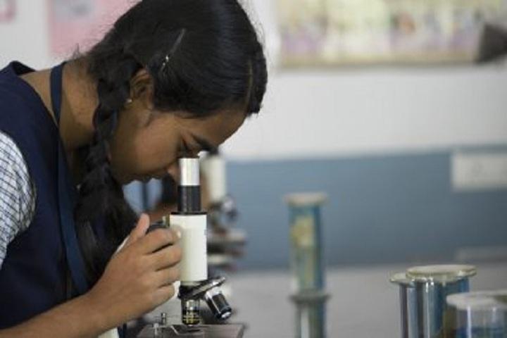 Glazebrooke Public School-Lab