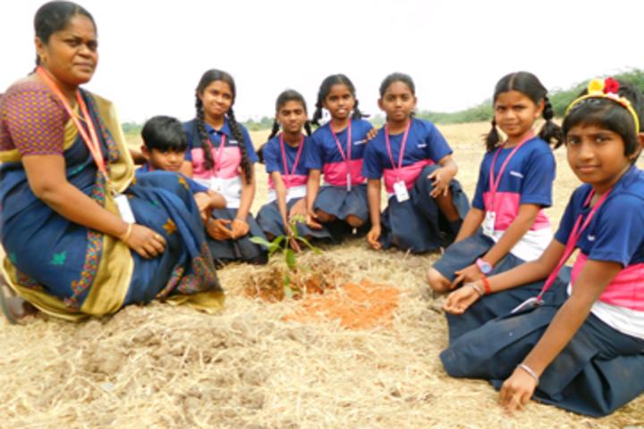Gnanodaya International School-Plantation
