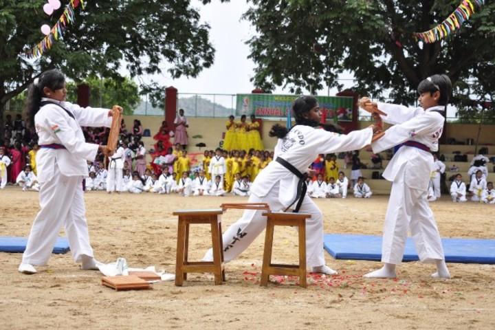 Holy Angels Public School-Karate