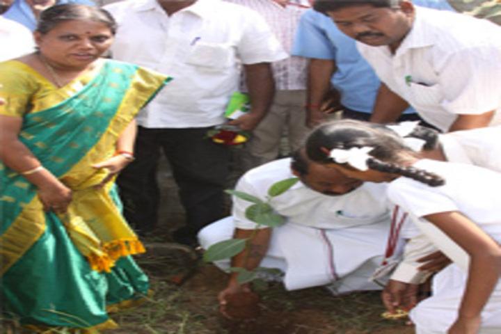 Jaya Jaya Sankara International School-Tree Plantation