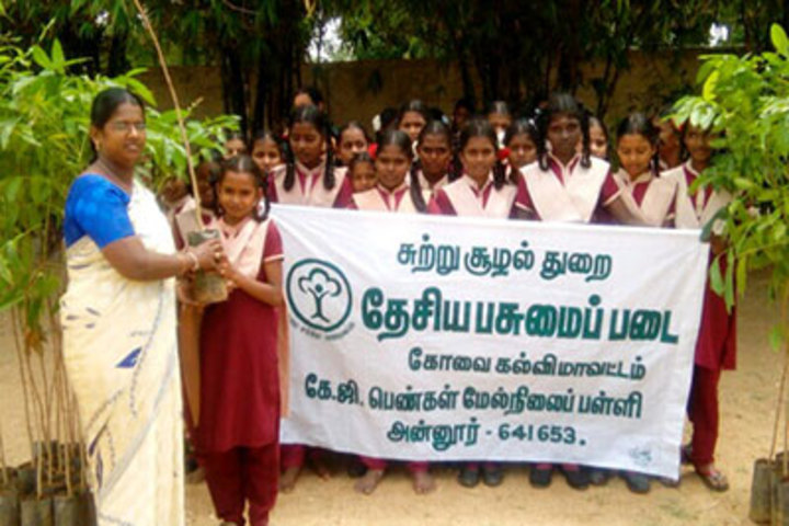 K G International School-Tree Plantation