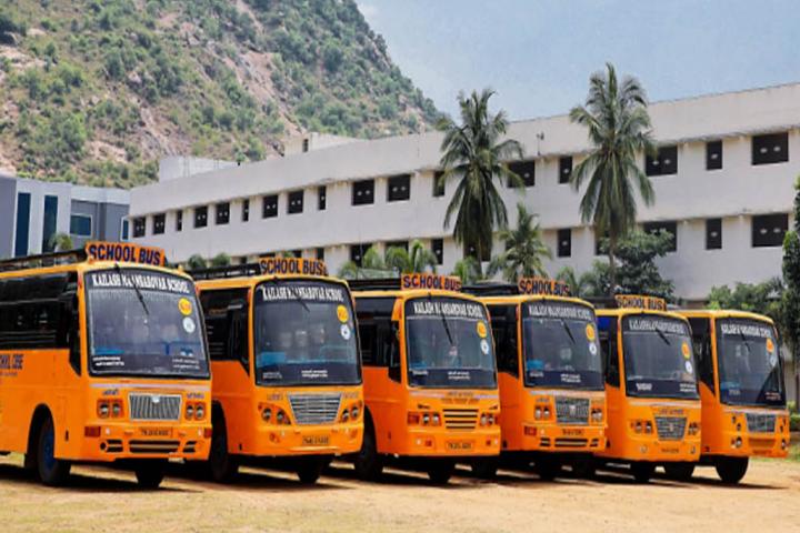 School Buses of Kailash Maansarovar School