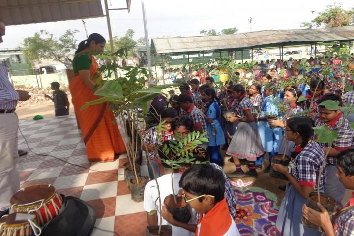 Kendriya Vidyalaya-Plantation