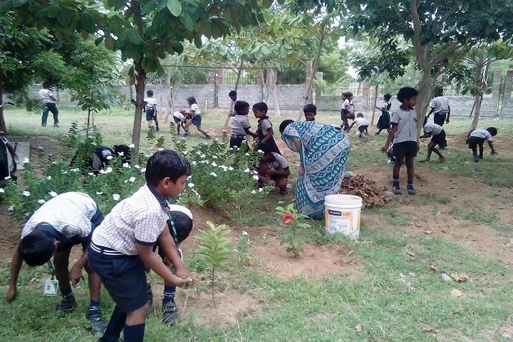 Kg VidhyaShram-Green Day