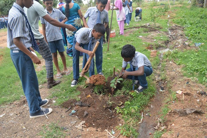 Kings And Queens Residencial School-Tree Planting