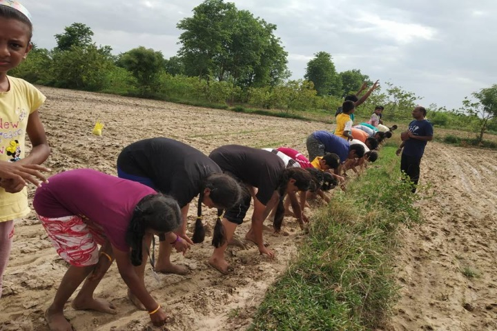 KRM Public School-Argo Farming