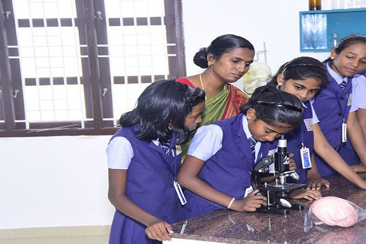 Little Champions School-Science Lab