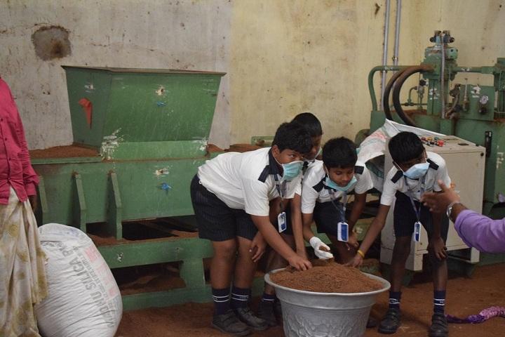 Mahatma Gandhi International School-Filed Trip
