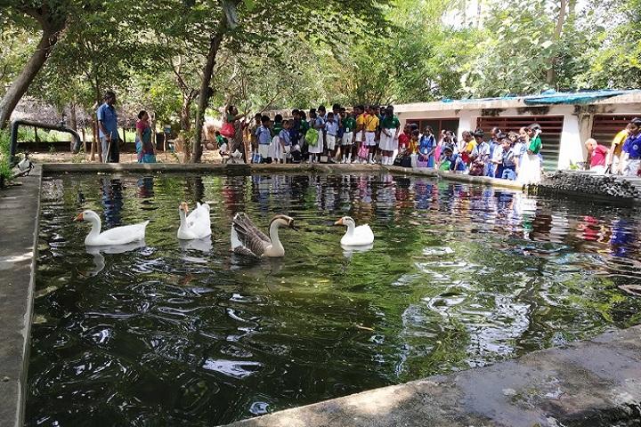Marg Navajyothi Vidyalaya-Filed Trip