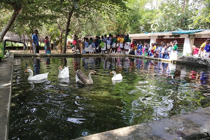 Marg Navajyothi Vidyalaya-Educational Trip