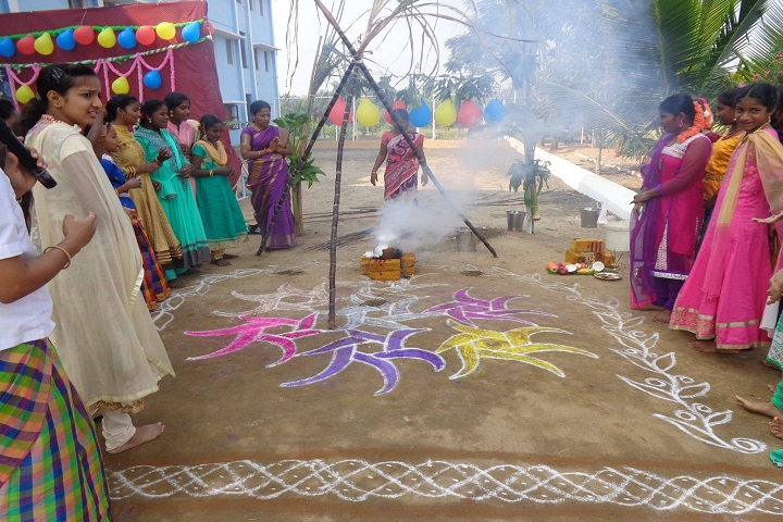 Meenakshi Ammal Global School-Pongal Celebrations