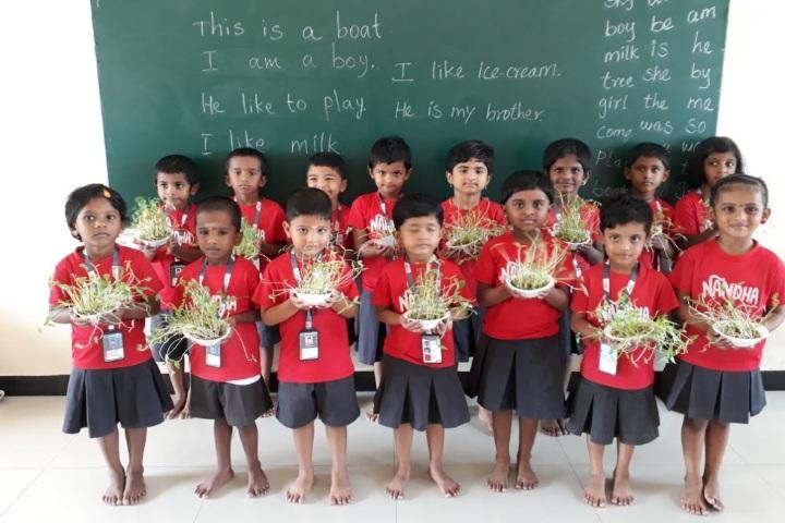 Nandha Central School-Tree Plantation
