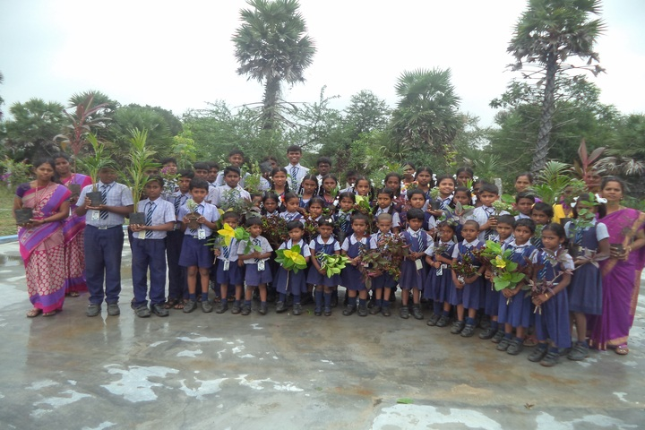 Nehruji Central Higher Secondary School-Plantation