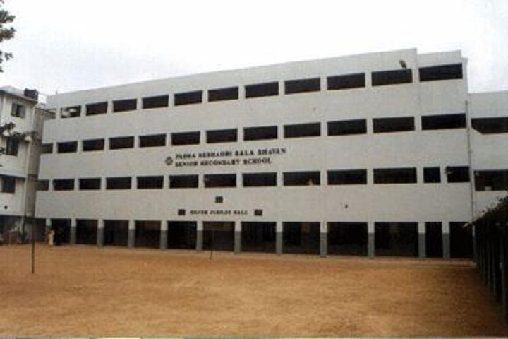 P S B B Senior Secondary School-School View