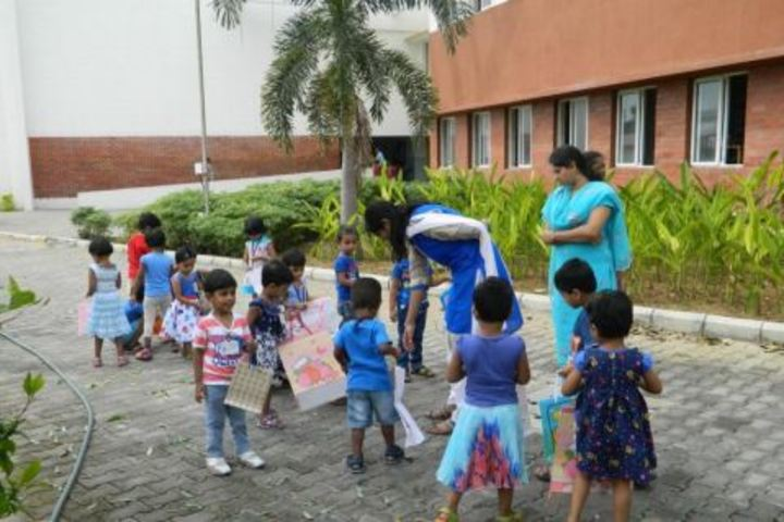 Padma Seshadri Bala Bhavan School-Kids Activity