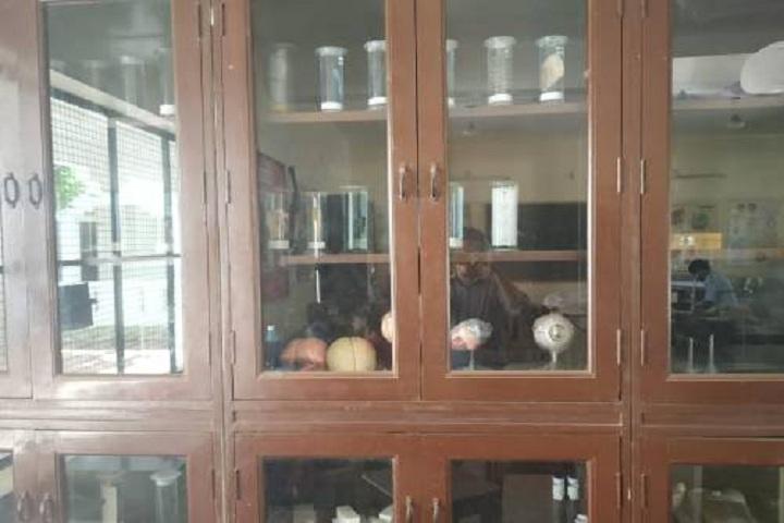 Pandugudi Sri Lakshmi Narayana Vidyalaya-Biology Lab
