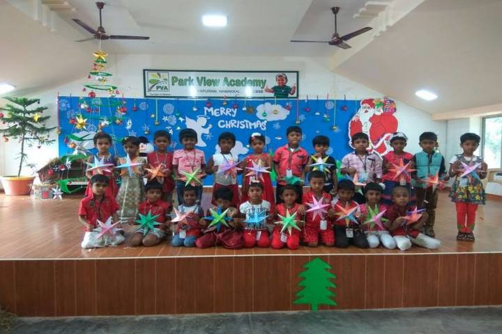 Park View Academy-Christmas Celebrtions