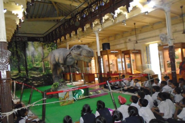Peace On Green Earth Public School-Museum