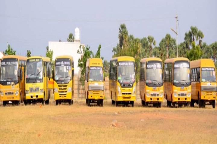 Pearls Public School-Transport