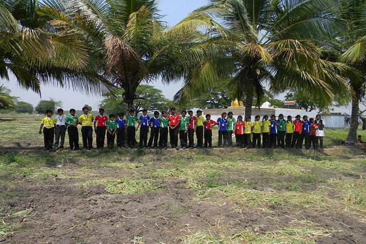 Ramachandra International Public School-field activity