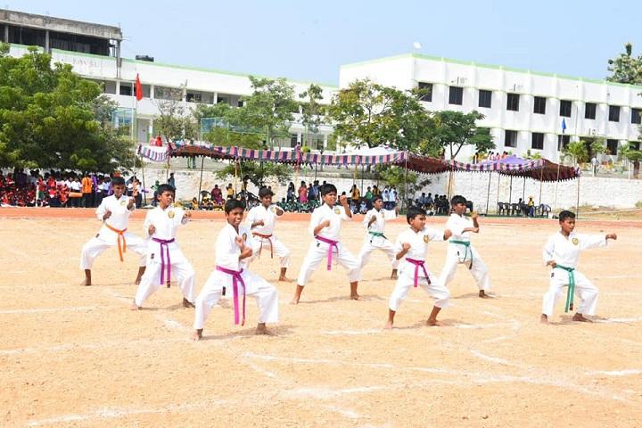 Royal International School-Karate