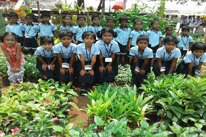 Royal International School-Field trip